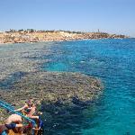 The coral reef at Hadaba Beach