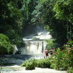 700 ft zip line right over these falls - it was  A M A Z I N G!!!