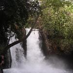 water fall, Banias park