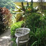 The grounds around the hacienda and the guest quarters are beatutifully planted.