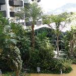 Zona exterior del hotel
