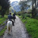 Horseback riding trail