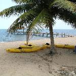 Kayaks and small sailboat available