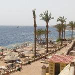 View of beach type area