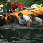 Hell's Canyon Sturgeon