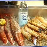 Ouzo with Fish