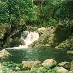 Rainforest: Trujillo, Honduras