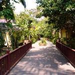 le pont entre la partie entrée-restaurant et le chemin des bungalows