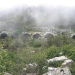 Termessos Photo