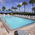 Heated Pool 60 feet long