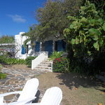 Photo of Guana Island