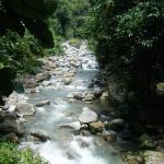 Photo de Kinabalu Park