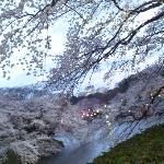 2010_Tokyo