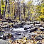 Taken on a hiking trip to Shenandoah