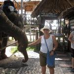 Kinnaree Elephant Trekking Tours Photo