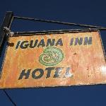 The Iguana Inn