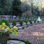 Company Garden has an old world charm