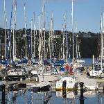 Kinsale- boats