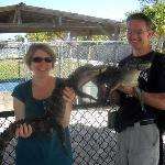 Holding baby alligators