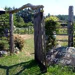 Vineyard entrance
