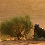 Wadi Rum Zeltcamps