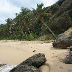 Beach, Turtle Bay