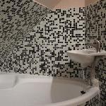 Lavabo dentro de bañera y sin espejo