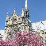 Visite guidée de la Cathédrale Notre Dame