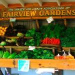 The Fairview Garden's Stand