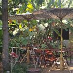 Peaceful garden where you can have breakfast.