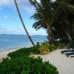 View down the beach at RBB