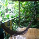 Hammock in front of room, with jungle view.