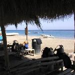 Marsa Alam Divers - Diving Center - Ecolodge Bedouin Valley