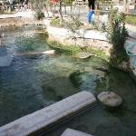 The Ancient Pool aka Cleopetra Pool aka Thermal Bath...