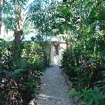 Kaya Sol Gardens