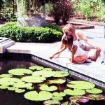 Dixon Botanic Garden @ Memphis Fuji Superia 100 / Pentax Super Program