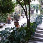 Jardin vu de la chambre 1