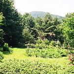 Porch View of Satulah Mountain