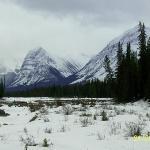 Athabasca Falls upstream 2, jasper National Park 1003-22
