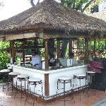 pool bar in garden