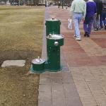 The water fountain in Centennial Olympic Park. Check out the little one for dogs!