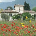 La Palombaia - holiday homes