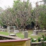 Foto de Old Protestant Cemetery