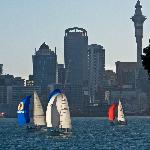 Sailboat race and Auckland
