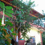 Casas Irma Y Angel Yelapa