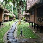 The lodge area.