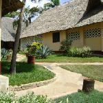 Cottages mit Stroh gedeckt