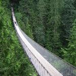 Pont suspendu pas loin du centre ville de Vancouver