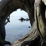 Petroglyph Beach State Historic Site