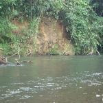visita al rio 1